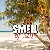 Smell of Sun – Ibiza Summertime, Beach Chill Out Music, Relax, Drink Bar, Colorful Drinks, Lounge Summer von Chill Out