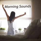 Morning Sounds (The Best of Extraordinary Chillout Lounge & Downbeat) de Various Artists