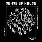 Sense of House, Vol. 37 (Technoid House Music Selection 37) by Various Artists