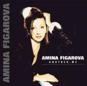 Another Me by Amina Figarova
