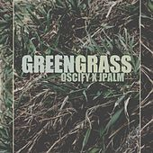 Green Grass by Jpalm