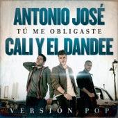 Tú Me Obligaste (Versión Pop) de Cali Y El Dandee
