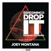Drop It (Reggaeton Remix) de Eshconinco