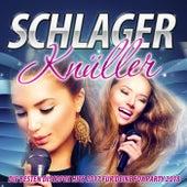 Schlager Knüller – Die besten Discofox Hits 2017 für deine Fox Party 2018 von Various Artists