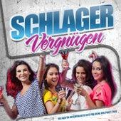 Schlager Vergnügen – Die besten Discofox Hits 2017 für deine Fox Party 2018 von Various Artists