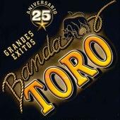25 Aniversario Grandes Exitos by Banda Toro