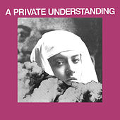 A Private Understanding by Protomartyr