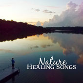 Nature Healing Songs – New Age Calming Sounds, Stress Relief, Peaceful Music, Chilled Memories de Sounds Of Nature