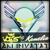 Am Invatat by Voxis