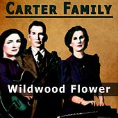 Wildwood Flower by The Carter Family