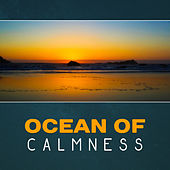 Ocean of Calmness – Natural Sounds of Water, River Sounds, Rain Relaxation, Waterfall, Soothing Waves, Calm Ocean, New Age Music by Various Artists