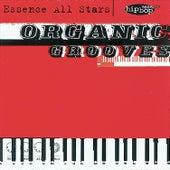 Organic Grooves de Essence All Stars