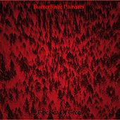 The Sea of Trees by ButterKnife Haircuts