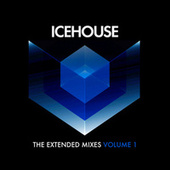 The Extended Mixes Vol. 1 by Icehouse