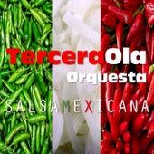 Salsa Mexicana by Tercera Ola Orquesta