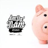 AmDa'N-am by Zhao