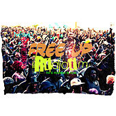 Free up Riddim von Various Artists