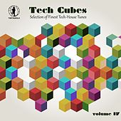 Tech Cubes, Vol. 17 - Selection of Finest Tech-House Tunes! by Various Artists