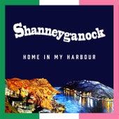 Home in My Harbour von Shanneyganock
