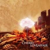 Cherry Blossom Love Affair by Pop Shuvit