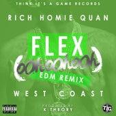 Flex (Ooh, Ooh, Ooh) (K Theory Remix) von Rich Homie Quan
