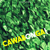Cawabonga! by Various Artists