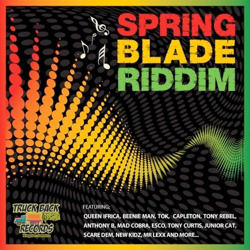 Springblade Riddim by Various Artists