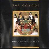 Natty Dread Rise Again by The Congos