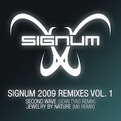 Signum 2009 Remixes Vol. 1 von Signum