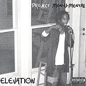 Project Monumental by Elevation