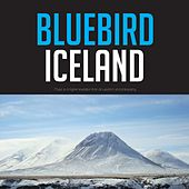 Bluebird Iceland von Various Artists