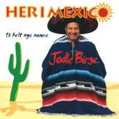 Her i Mexico von Jodle Birge