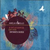 A Delicadeza Que Vem Desses Sons by Amélia Rabello