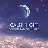 Calm Night (Comfort Easy Sleep Music, Insomnia Cure, No More Trouble Sleeping) by Various Artists