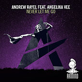Never Let Me Go de Andrew Rayel