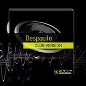 Despacito van DJ Roody