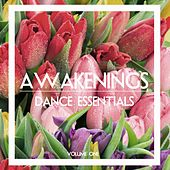 Awakenings Dance Essentials, Vol. 1 by Various Artists