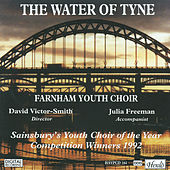 The Water of Tyne by Julia Freeman