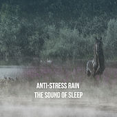 Anti-Stress Rain: The Sound of Sleep by Various Artists
