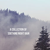 A Collection of Soothing Night Rain by Various Artists