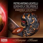 Sei sonate a tre opera quinta by Ensemble Pietro Antonio Locatelli