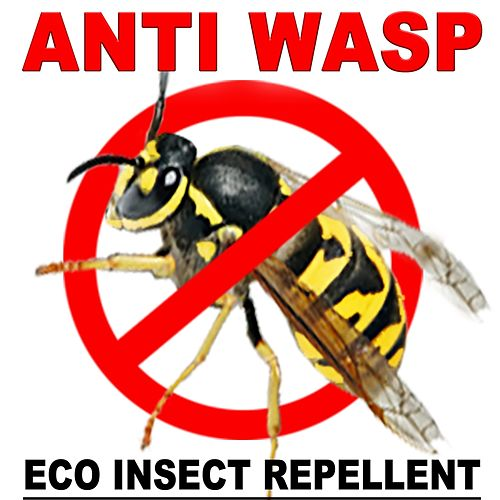 Anti Wasp: Eco Insect Repellent by R.M.G