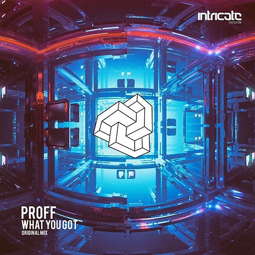 What You Got by Proff