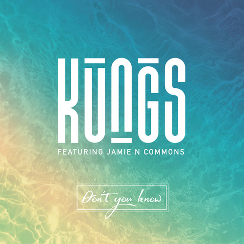 Don't You Know (DJ Licious Remix) by Kungs