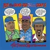 Not the Same Old Blues Crap II de Various Artists