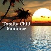 Totally Chill Summer de Various Artists