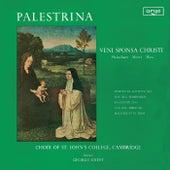 Palestrina: Veni Sponsa Christi by Various Artists