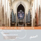 Orgelmusik der Romantik de Friedemann Johannes Wieland