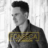 Conexión + de Fonseca