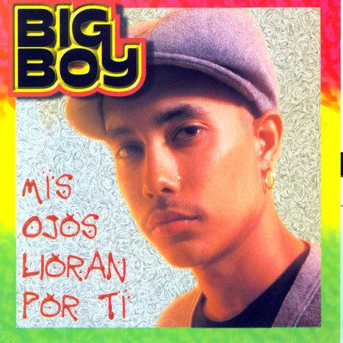 Mis Ojos Lloran por Ti (feat. Angel Lopez) by Big Boy